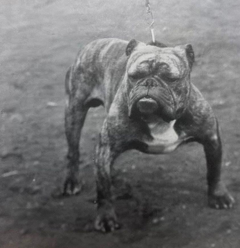 Matchless 1903
